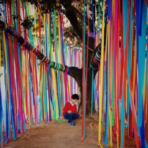 Streamers hung from tree branches merge science and art in outdoor classrooms