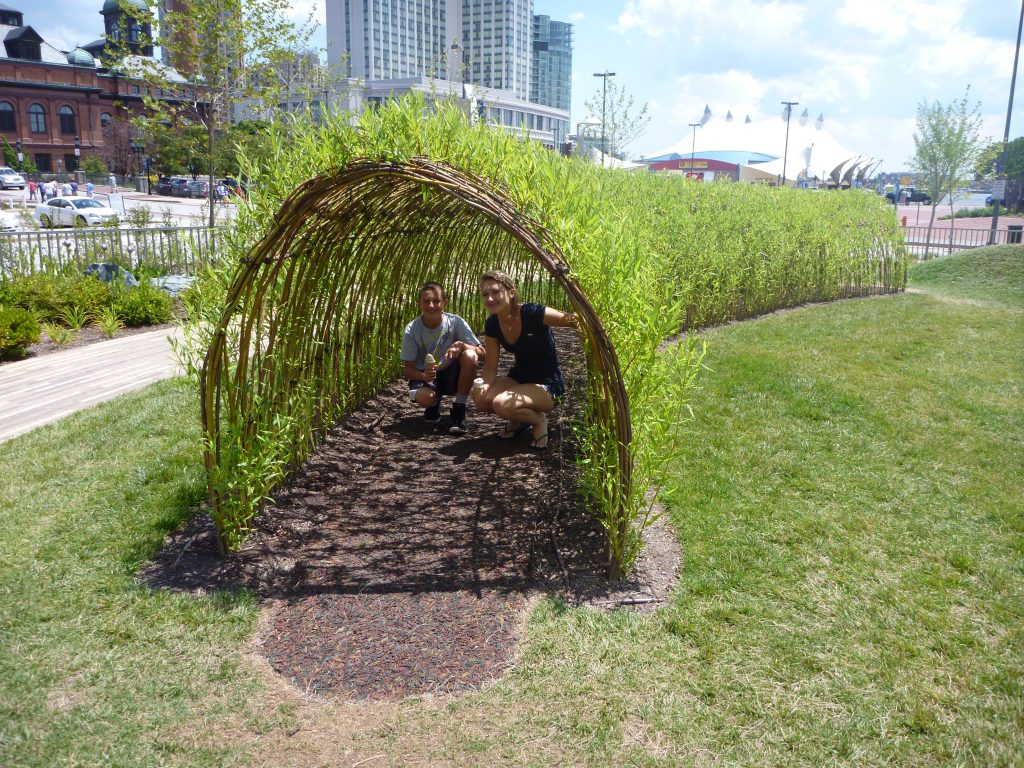 2.A tunnel made of willow branches at Pierce's Park offers outdoor ed opportunities for children.