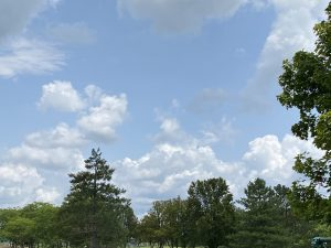Blue skies and tall trees represent Doug Maggied's happy place